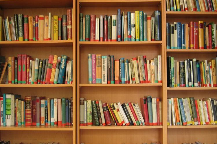Biblioteca ao domicílio em Nelas
