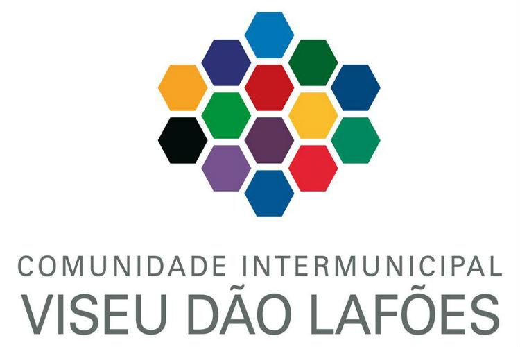 CIM Viseu Dão Lafões quer ensino à distância