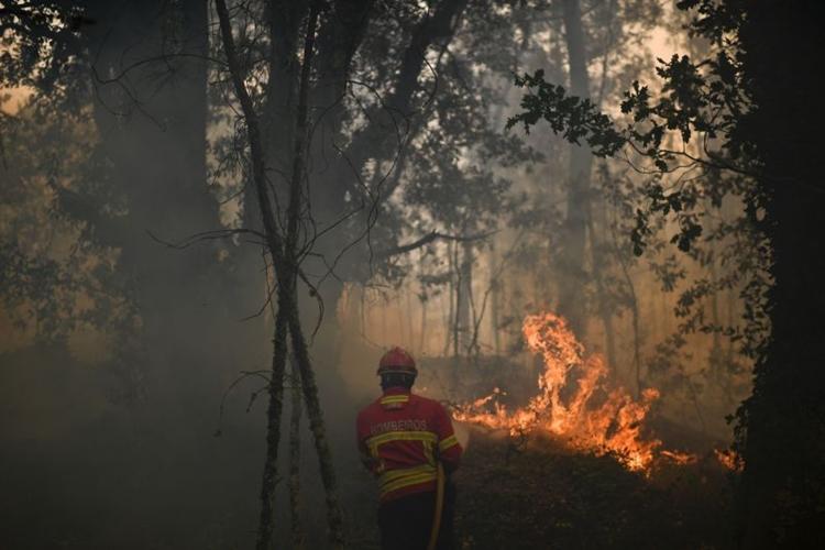 Número de vítimas dos incêndios pode subir para 112