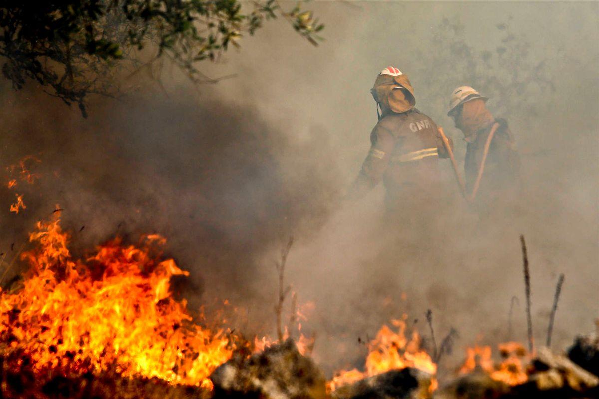 GNR detém seis suspeitos de fogo posto em Viseu